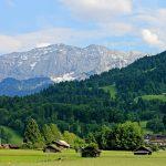 Ce potențial de business există în zonele rurale din România?